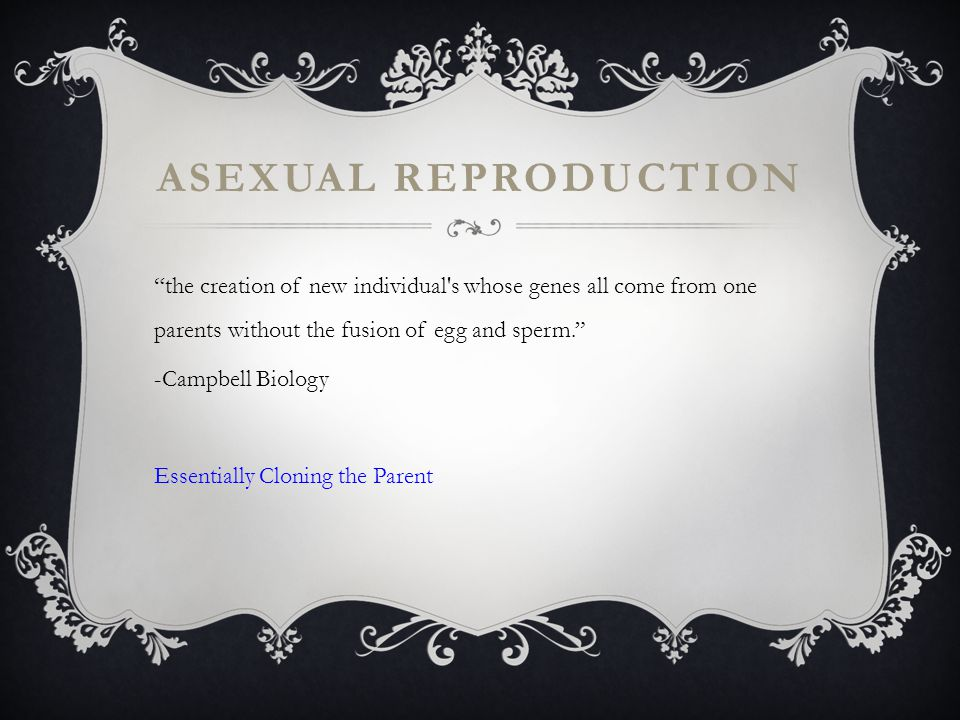 ASEXUAL REPRODUCTION the creation of new individual s whose genes all come from one parents without the fusion of egg and sperm. -Campbell Biology Essentially Cloning the Parent