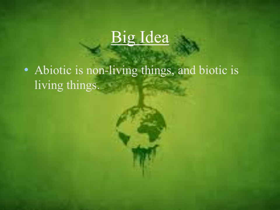 Big Idea Abiotic is non-living things, and biotic is living things.