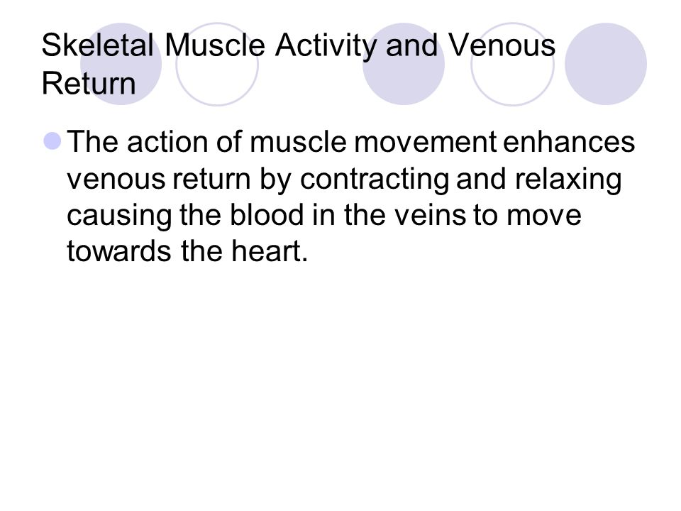 Major veins of Systemic circulation Great Saphenous vein: longest veins in the body.