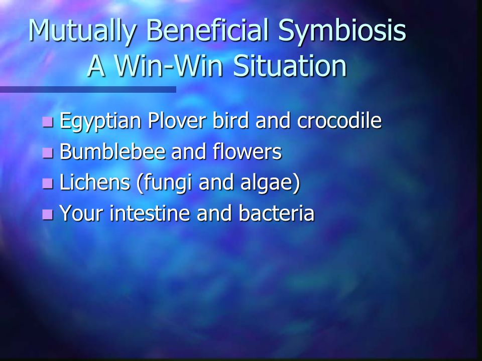 Mutually Beneficial Symbiosis A Win-Win Situation Egyptian Plover bird and crocodile Egyptian Plover bird and crocodile Bumblebee and flowers Bumblebee and flowers Lichens (fungi and algae) Lichens (fungi and algae) Your intestine and bacteria Your intestine and bacteria