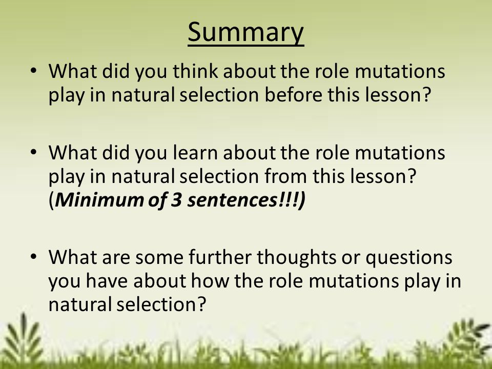 Analysis Questions 1.Are mutations always helpful? Explain. 2.How can mutations enable the evolution of a new species to occur? 3.Under ideal conditio
