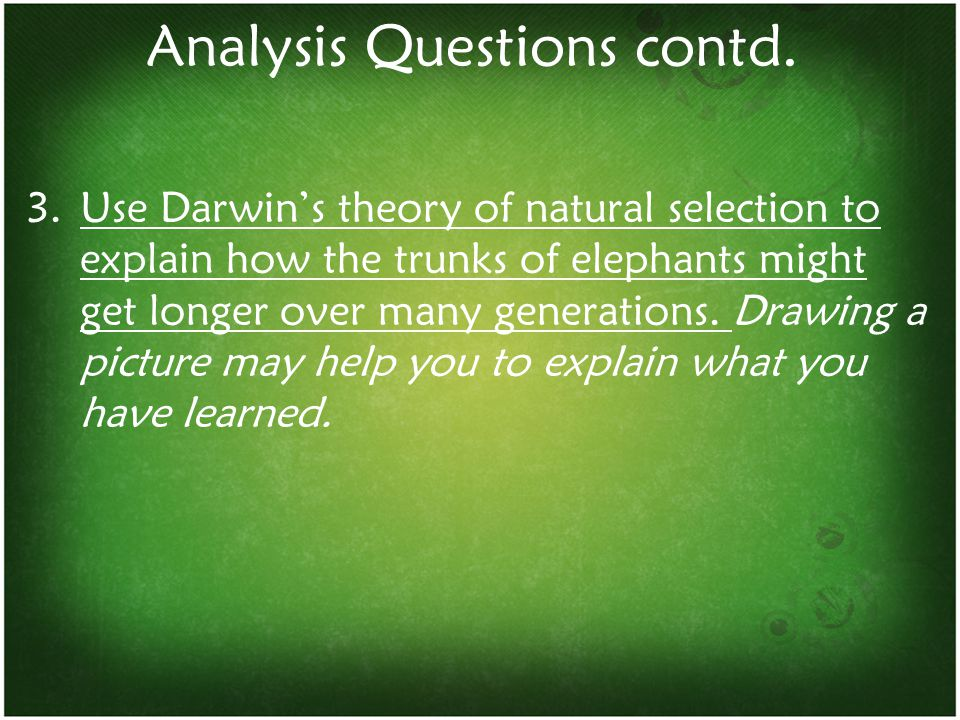 Analysis Questions contd.