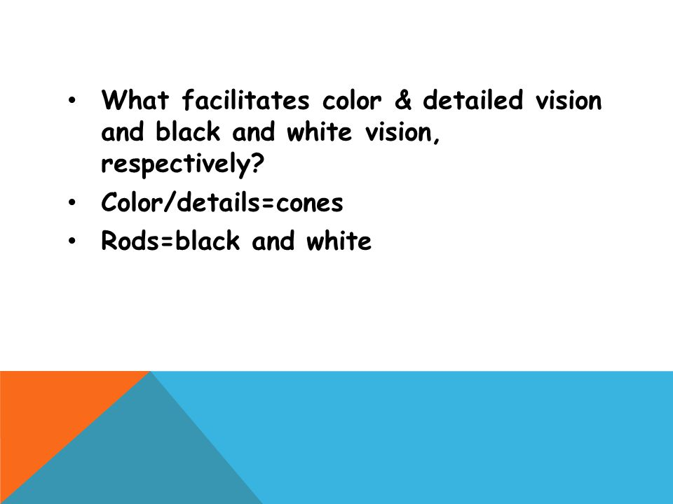 What facilitates color & detailed vision and black and white vision, respectively? Color/details=cones Rods=black and white