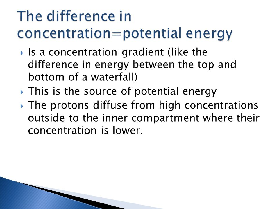  Is a concentration gradient (like the difference in energy between the top and bottom of a waterfall)  This is the source of potential energy  The protons diffuse from high concentrations outside to the inner compartment where their concentration is lower.