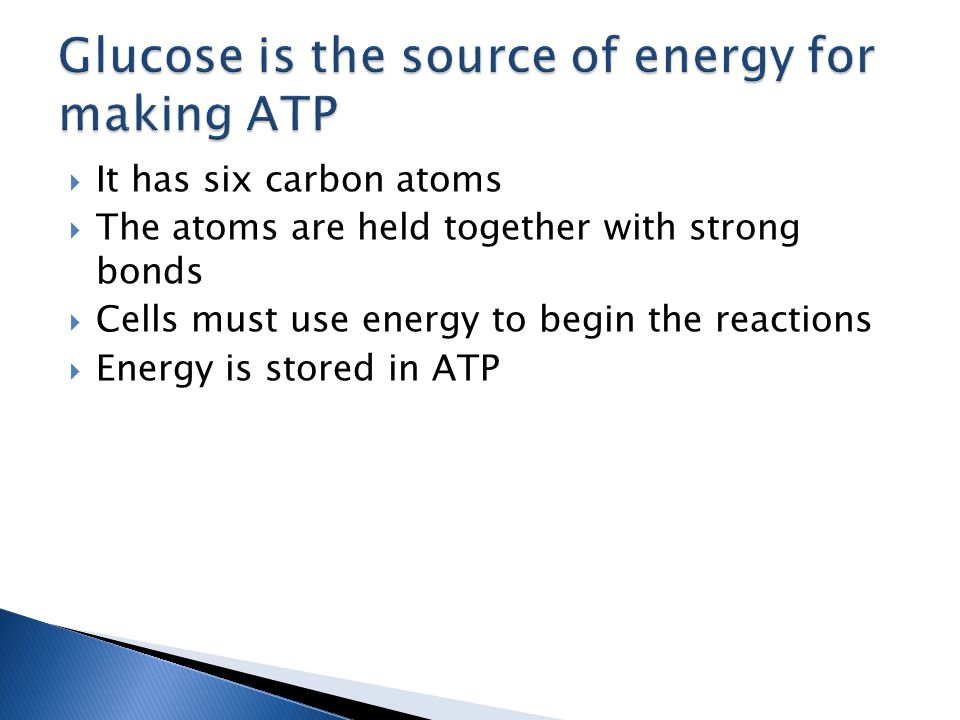  It has six carbon atoms  The atoms are held together with strong bonds  Cells must use energy to begin the reactions  Energy is stored in ATP