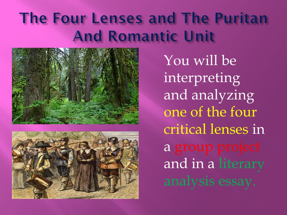 You will be interpreting and analyzing one of the four critical lenses in a group project and in a literary analysis essay.