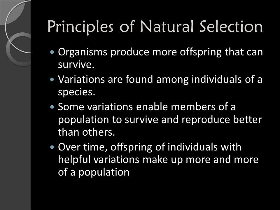 Principles of Natural Selection Organisms produce more offspring that can survive.