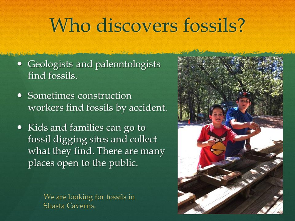 Who discovers fossils. Geologists and paleontologists find fossils.