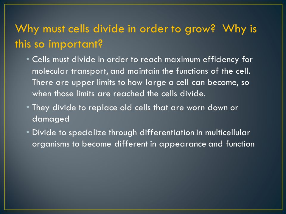 Why must cells divide and grow? Why is this so important?