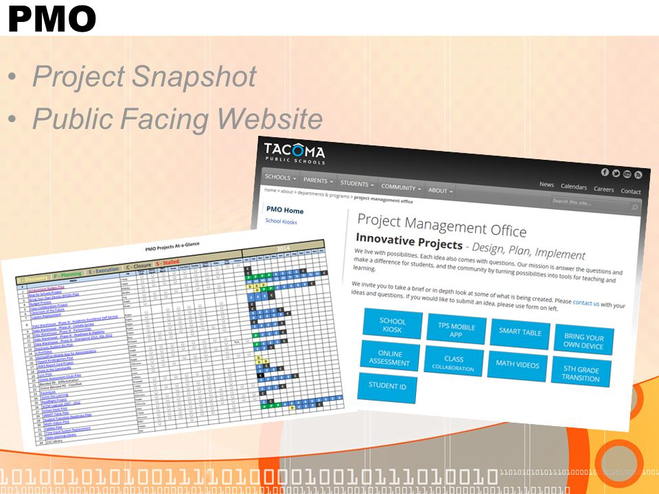 PMO Project Snapshot Public Facing Website