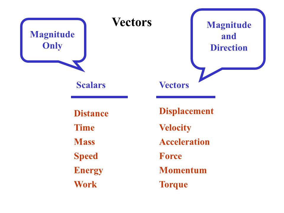 Vectors ScalarsVectors Distance Time Mass Work Energy Speed Displacement Velocity Acceleration Force Momentum Torque Magnitude Only Magnitude and Direction