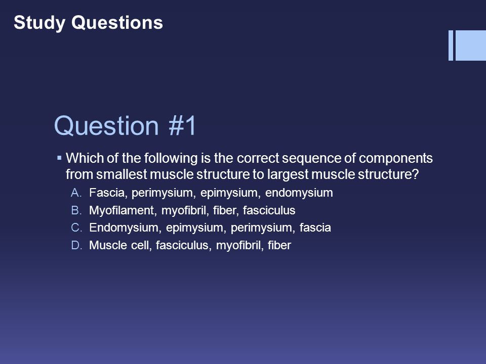 Question #1 WWhich of the following is the correct sequence of components from smallest muscle structure to largest muscle structure? A.Fascia, peri