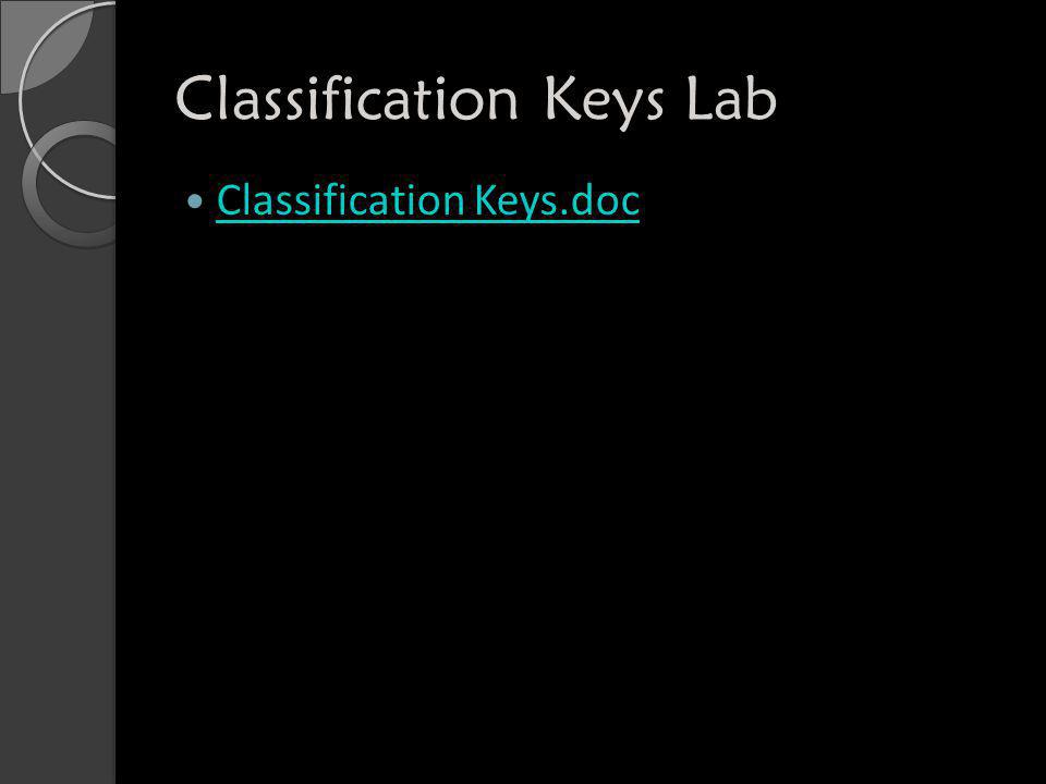 Classification Keys Lab Classification Keys.doc