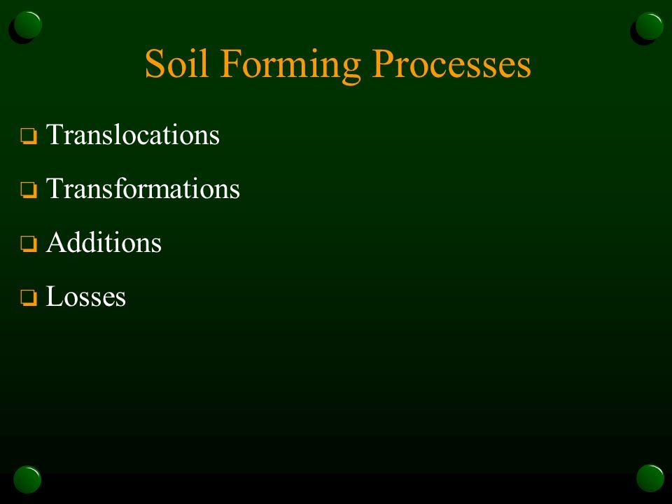 Soil Forming Processes o Translocations o Transformations o Additions o Losses