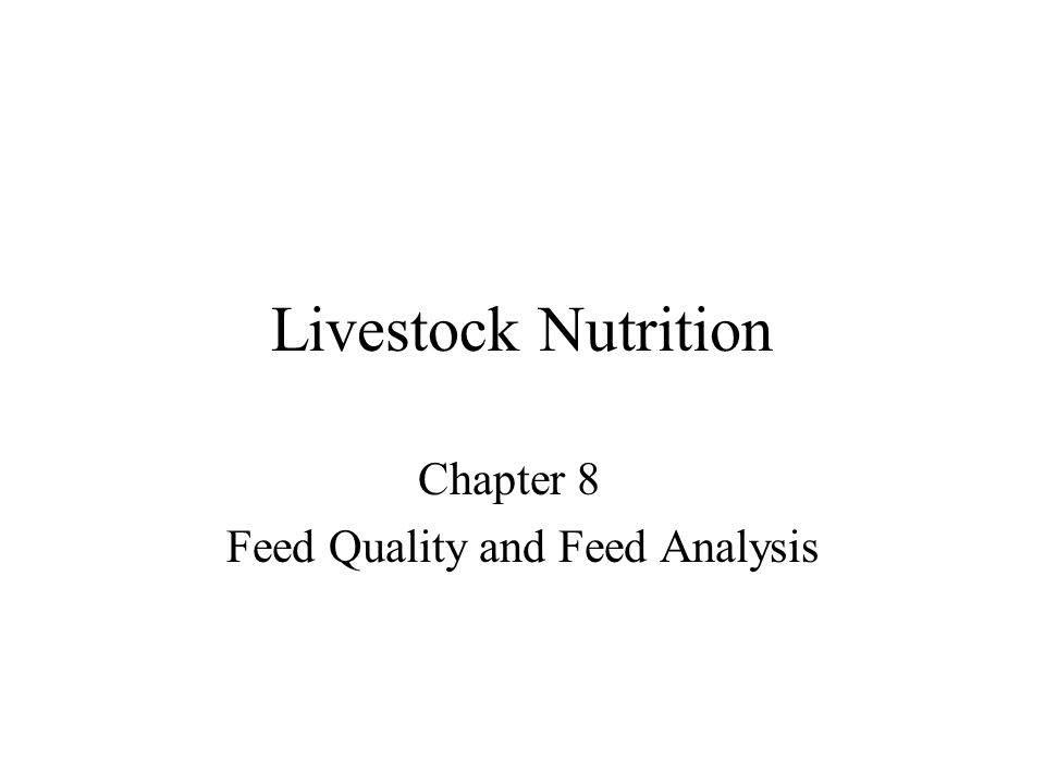 Objectives Describe quality Characteristics of grains and other feeds.