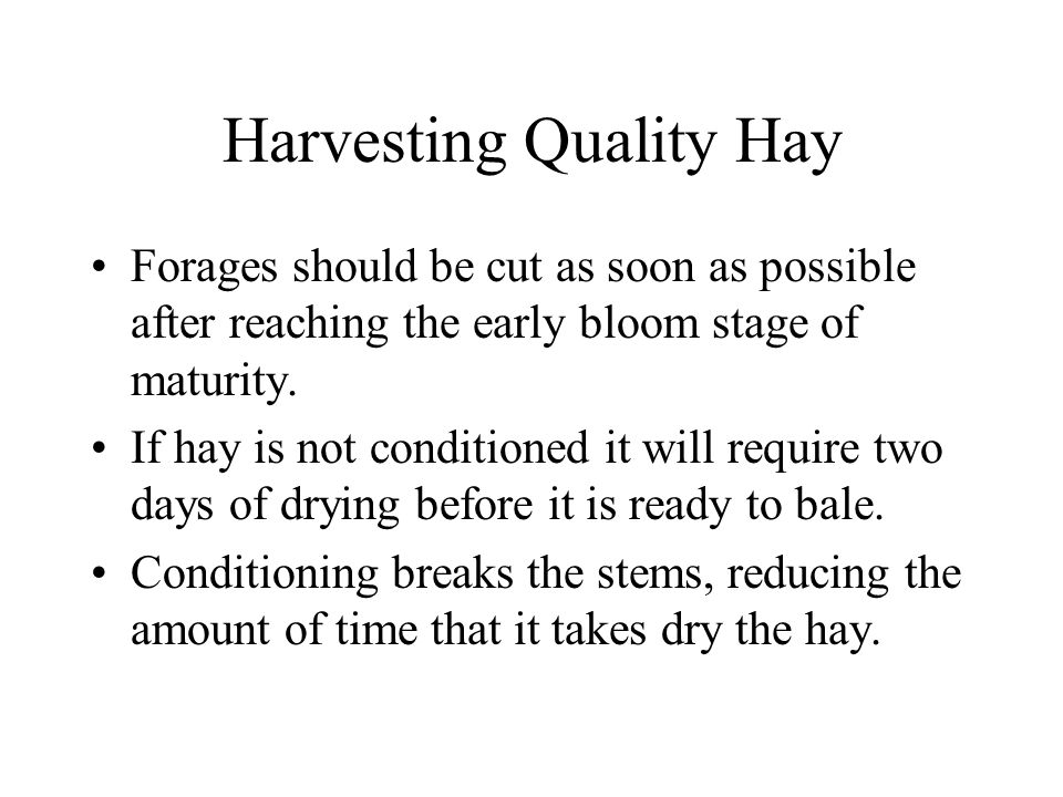 Harvesting Quality Hay Hay should be baled as soon as possible after it reaches a safe moisture level for storage.
