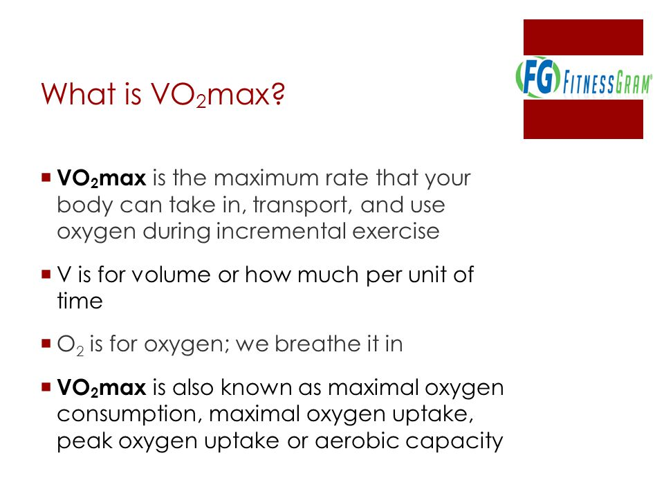 What is VO 2 max.