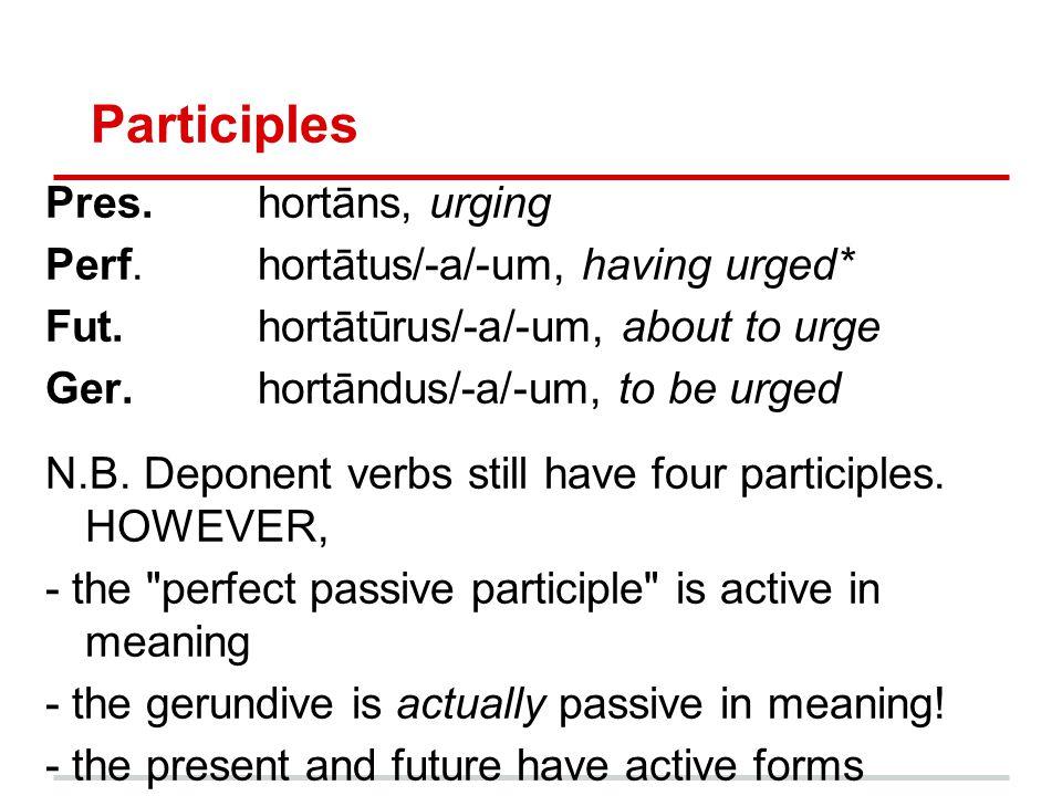 Infinitives Pres.hortārī, to urge Perf.hortātus/-a/-um esse, to have urged Fut.