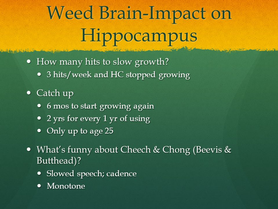 Weed Brain-Impact on Hippocampus How many hits to slow growth? How many hits to slow growth? 3 hits/week and HC stopped growing 3 hits/week and HC sto