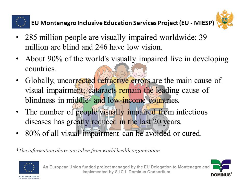 EU Montenegro Inclusive Education Services Project (EU - MIESP) 285 million people are visually impaired worldwide: 39 million are blind and 246 have low vision.