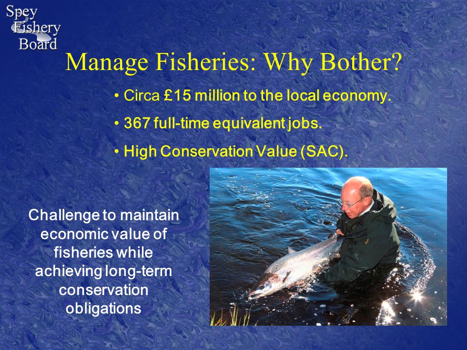 Manage Fisheries: Why Bother. Circa £15 million to the local economy.