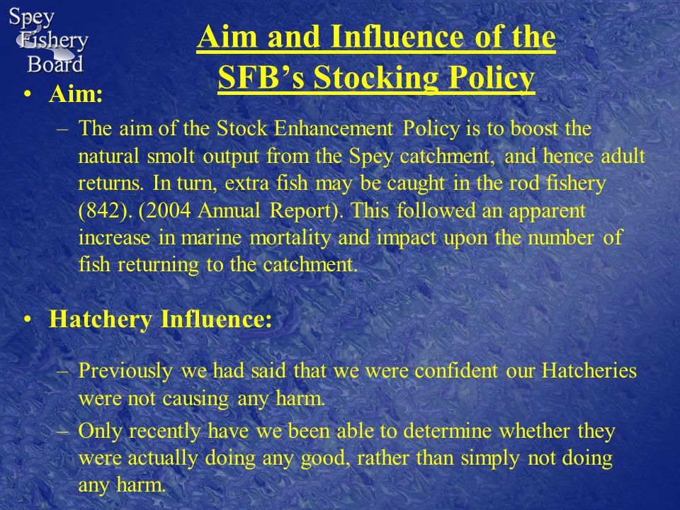 Aim and Influence of the SFB's Stocking Policy Aim: –The aim of the Stock Enhancement Policy is to boost the natural smolt output from the Spey catchment, and hence adult returns.