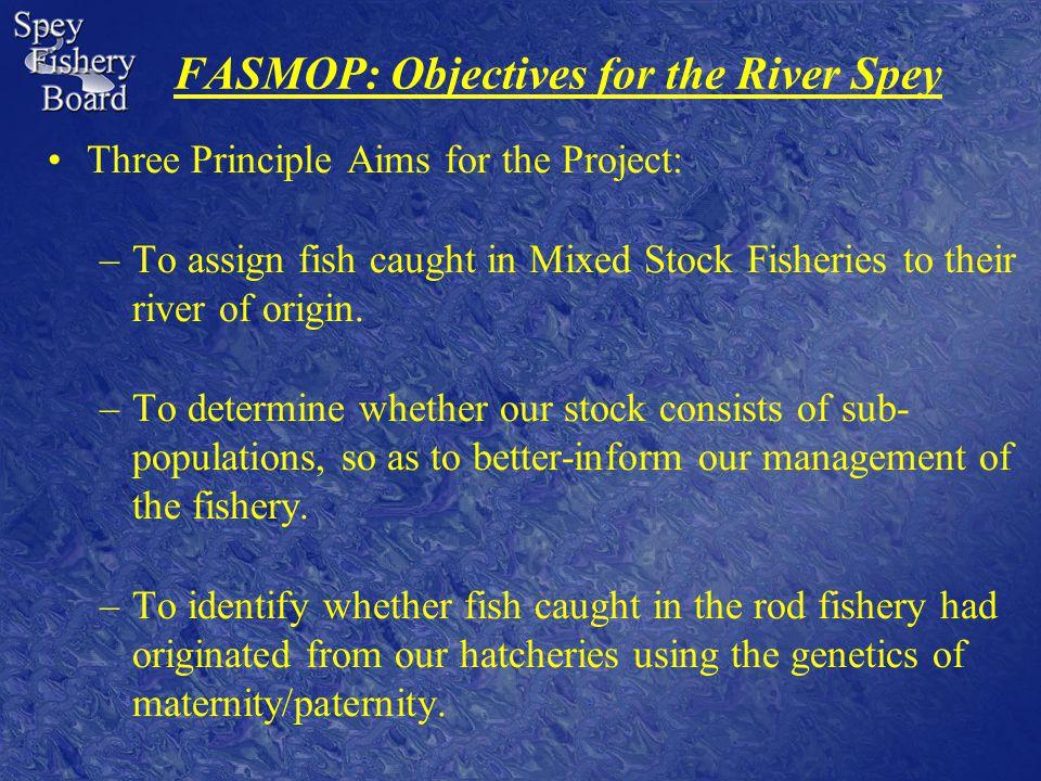 Fishery Management on the Spey: Habitat Improvements