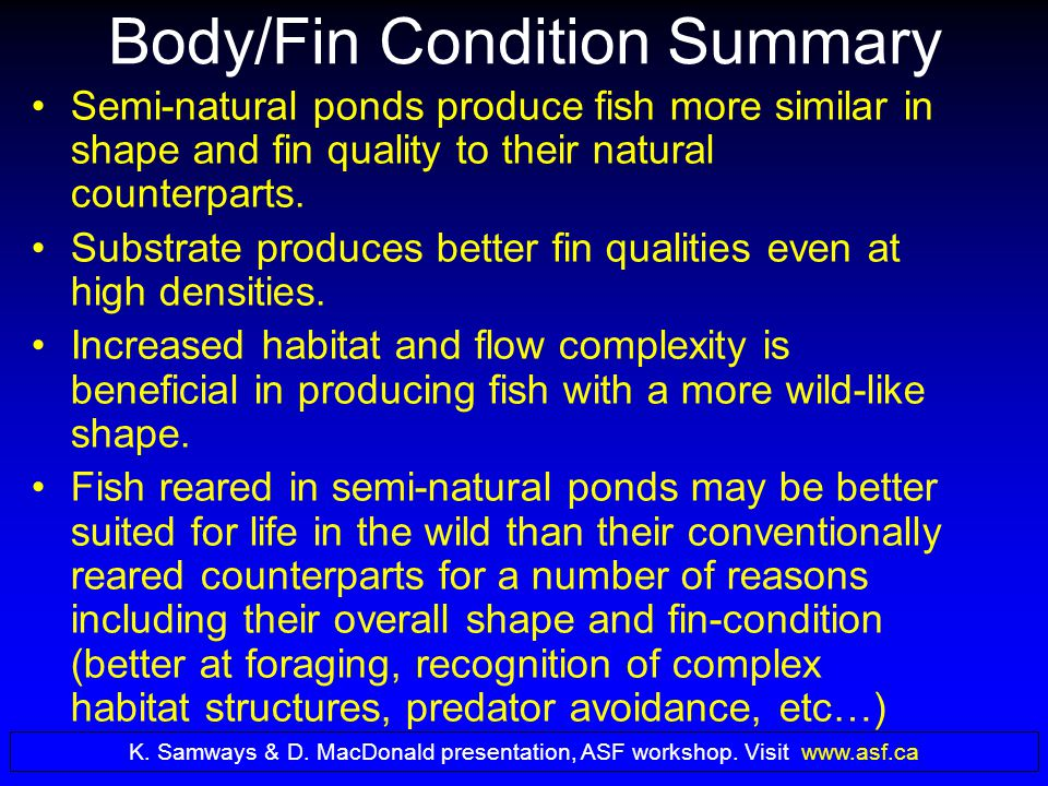 Body/Fin Condition Summary Semi-natural ponds produce fish more similar in shape and fin quality to their natural counterparts.