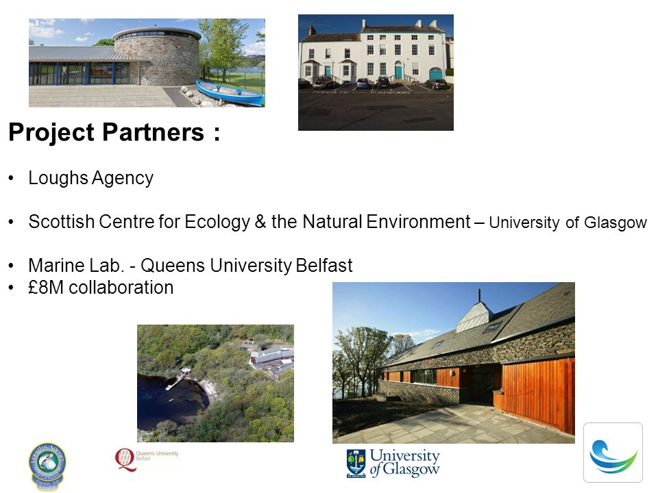 Project Partners : Loughs Agency Scottish Centre for Ecology & the Natural Environment – University of Glasgow Marine Lab.