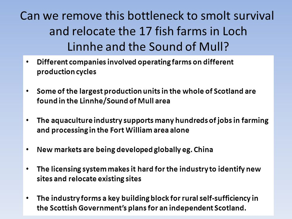 Different companies involved operating farms on different production cycles Some of the largest production units in the whole of Scotland are found in