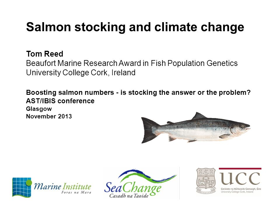 Salmon stocking and climate change Tom Reed Beaufort Marine Research Award in Fish Population Genetics University College Cork, Ireland Boosting salmon numbers - is stocking the answer or the problem.
