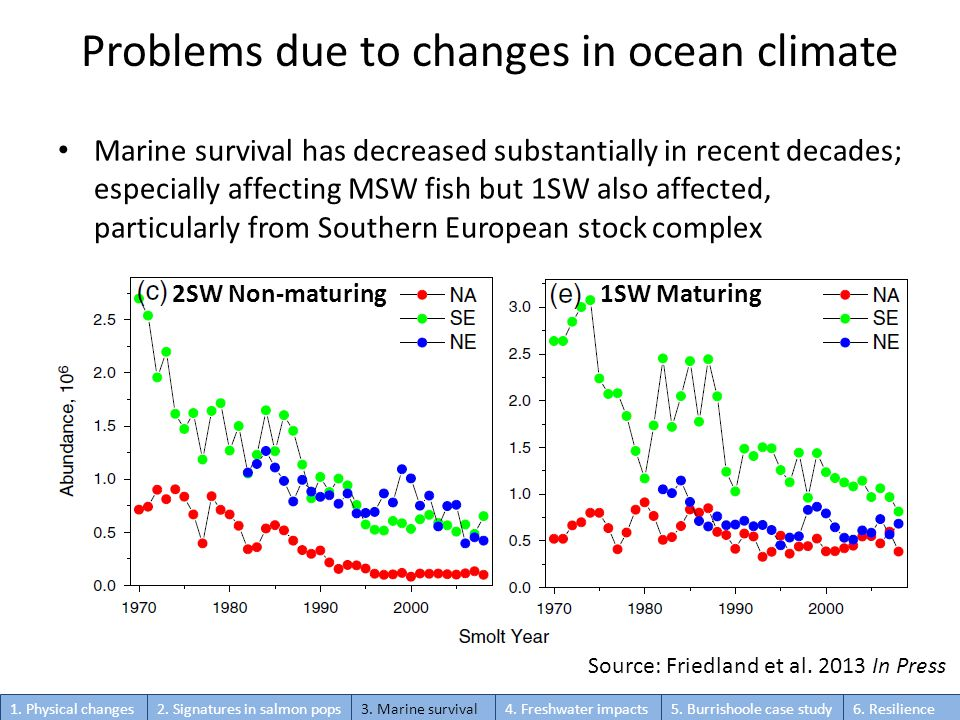 Problems due to changes in ocean climate Marine survival has decreased substantially in recent decades; especially affecting MSW fish but 1SW also affected, particularly from Southern European stock complex Source: Friedland et al.