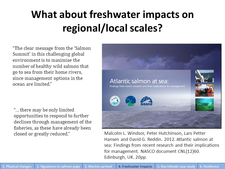 The clear message from the 'Salmon Summit' in this challenging global environment is to maximise the number of healthy wild salmon that go to sea from their home rivers, since management options in the ocean are limited. Malcolm L.
