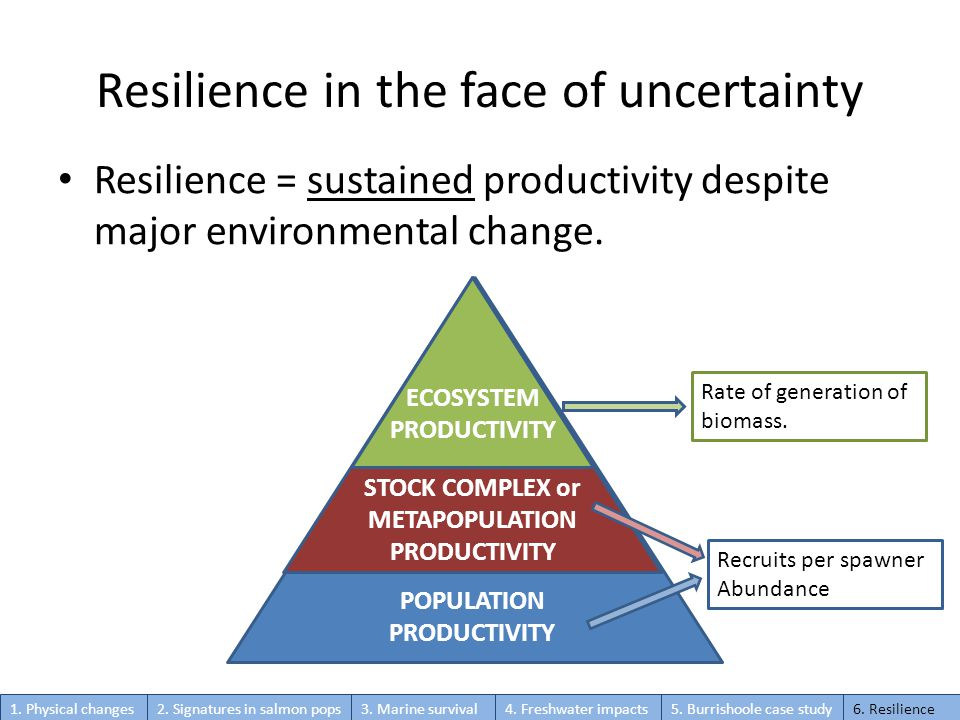 Resilience in the face of uncertainty Resilience = sustained productivity despite major environmental change.
