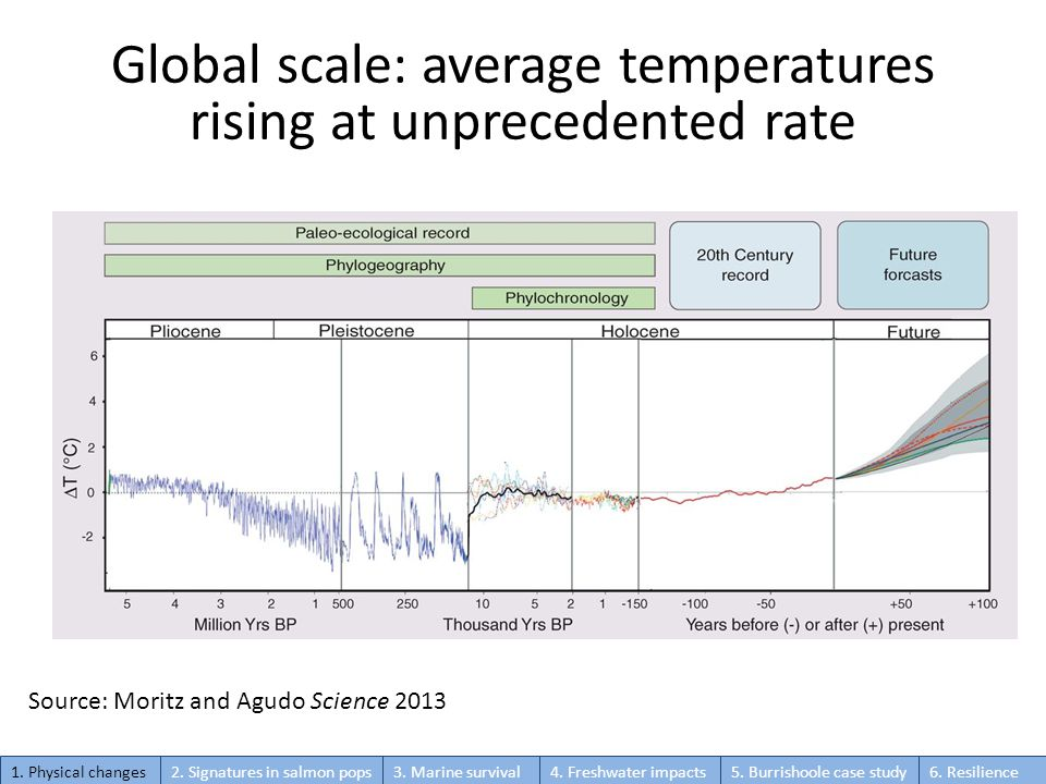 Global scale: average temperatures rising at unprecedented rate Source: Moritz and Agudo Science 2013 1. Physical changes2. Signatures in salmon pops3