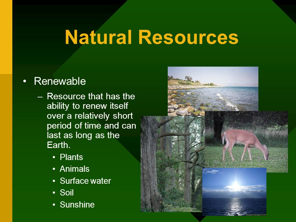 Natural Resources Renewable –Resource that has the ability to renew itself over a relatively short period of time and can last as long as the Earth.