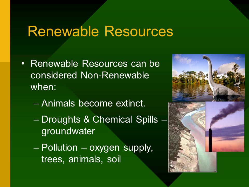 Renewable Resources Renewable Resources can be considered Non-Renewable when: –Animals become extinct.