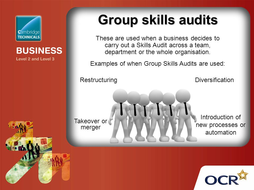 Group skills audits These are used when a business decides to carry out a Skills Audit across a team, department or the whole organisation.