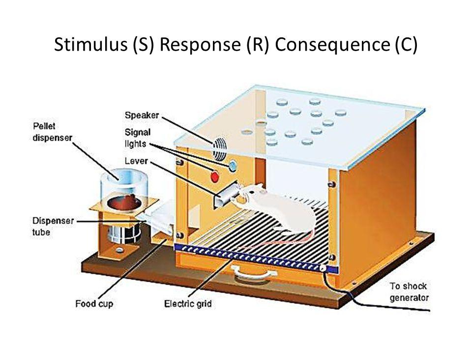 Stimulus (S) Response (R) Consequence (C)