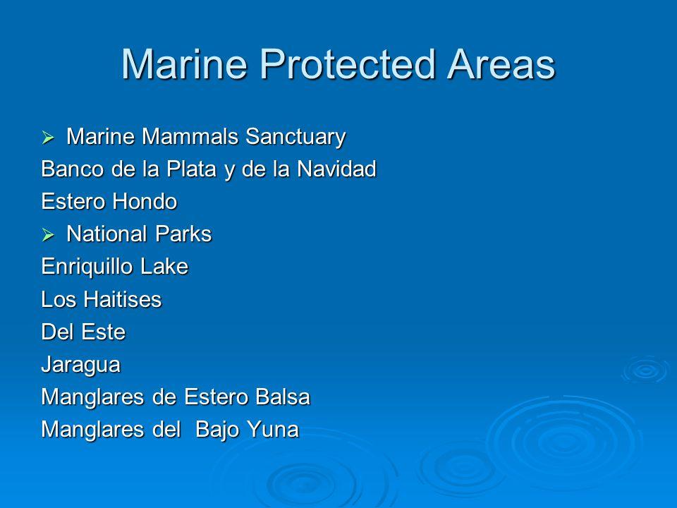 Marine Protected Areas  Marine Mammals Sanctuary Banco de la Plata y de la Navidad Estero Hondo  National Parks Enriquillo Lake Los Haitises Del Este Jaragua Manglares de Estero Balsa Manglares del Bajo Yuna