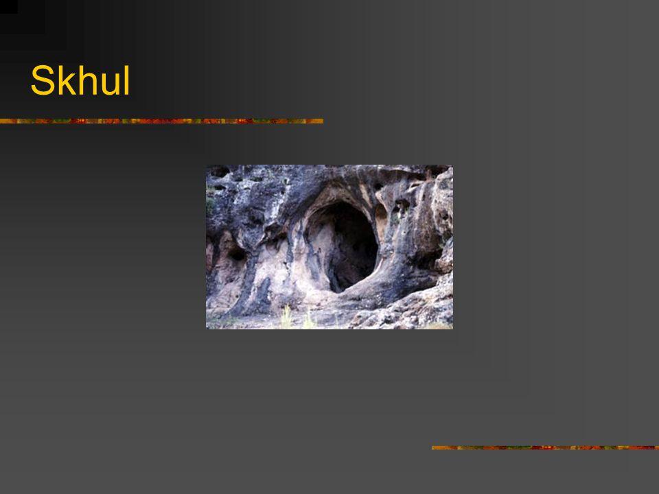 Skhul