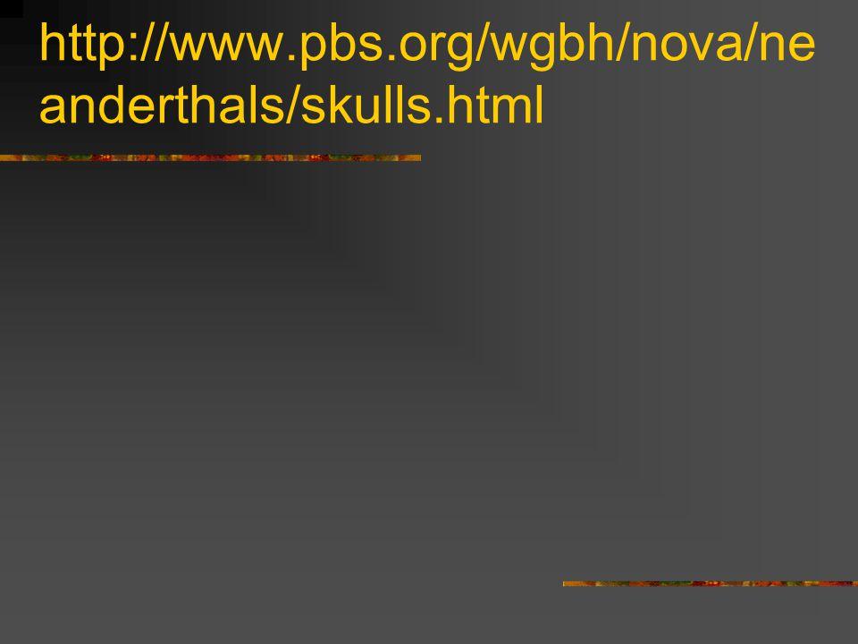 http://www.pbs.org/wgbh/nova/ne anderthals/skulls.html