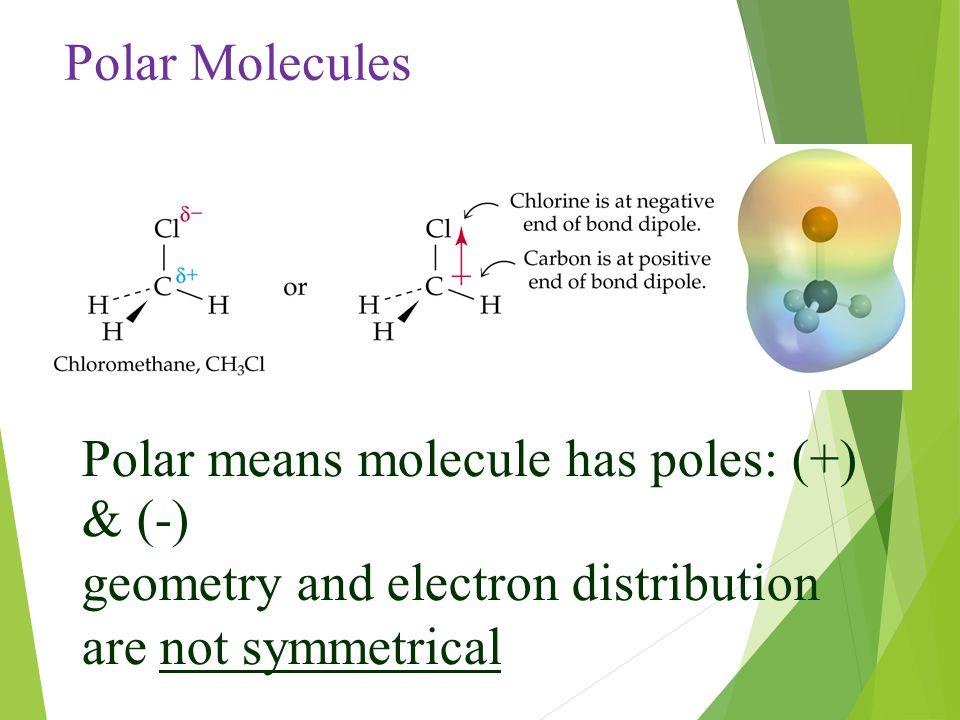 Polar means molecule has poles: (+) & (-) geometry and electron distribution are not symmetrical Polar Molecules