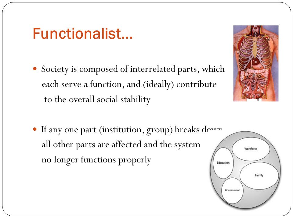 Functionalist… Society is composed of interrelated parts, which each serve a function, and (ideally) contribute to the overall social stability If any one part (institution, group) breaks down, all other parts are affected and the system no longer functions properly