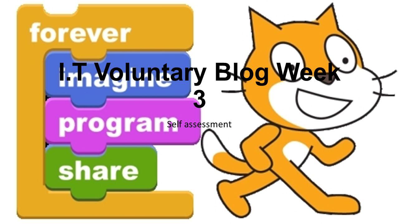 I.T Voluntary Blog Week 3 Self assessment