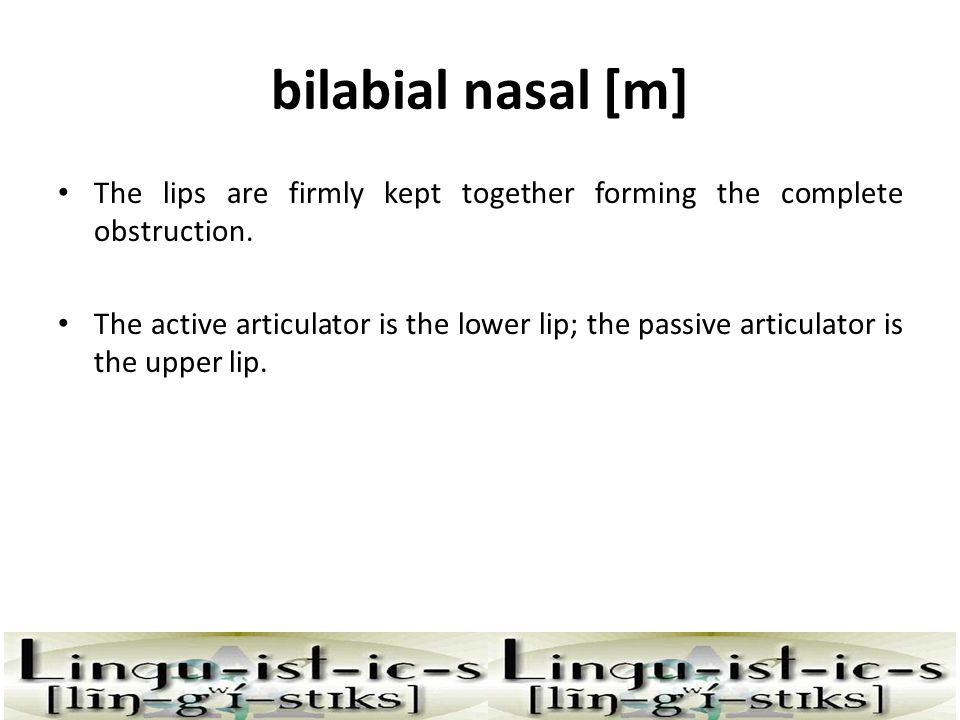 bilabial nasal [m] The soft palate is lowered and the air escapes through the nasal cavity.