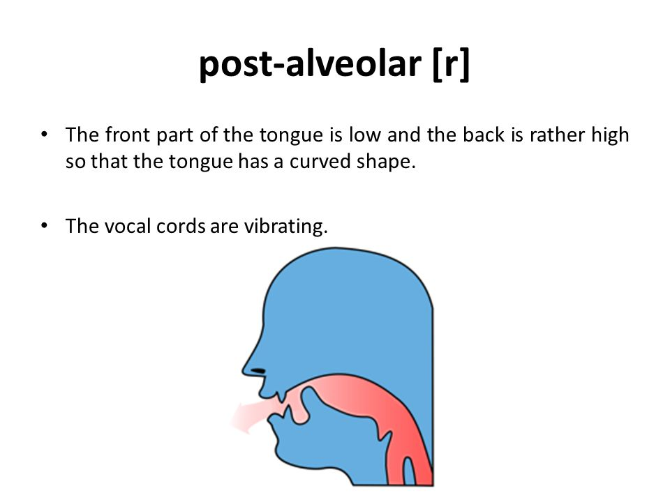 Classification of vowels Depending on the height of the tongue, vowels can be classified into high, low, and mid vowels: 1) When the front or the back of the tongue is raised towards the roof of the mouth, the vowel is called high, this is the case, e.g., in pill, meet, look, or soon.