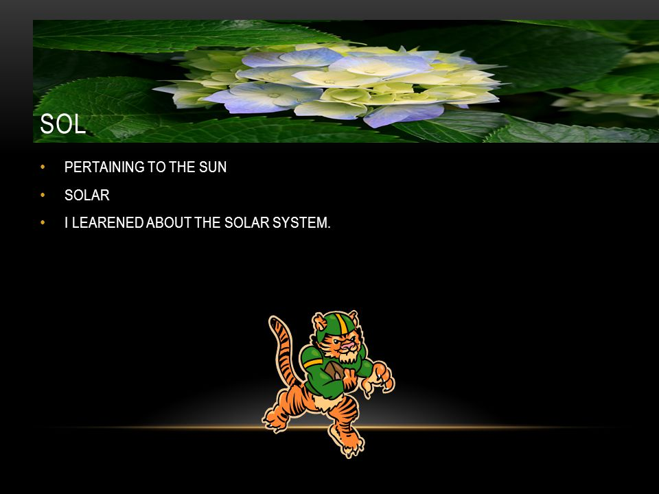 SOL PERTAINING TO THE SUN SOLAR I LEARENED ABOUT THE SOLAR SYSTEM.
