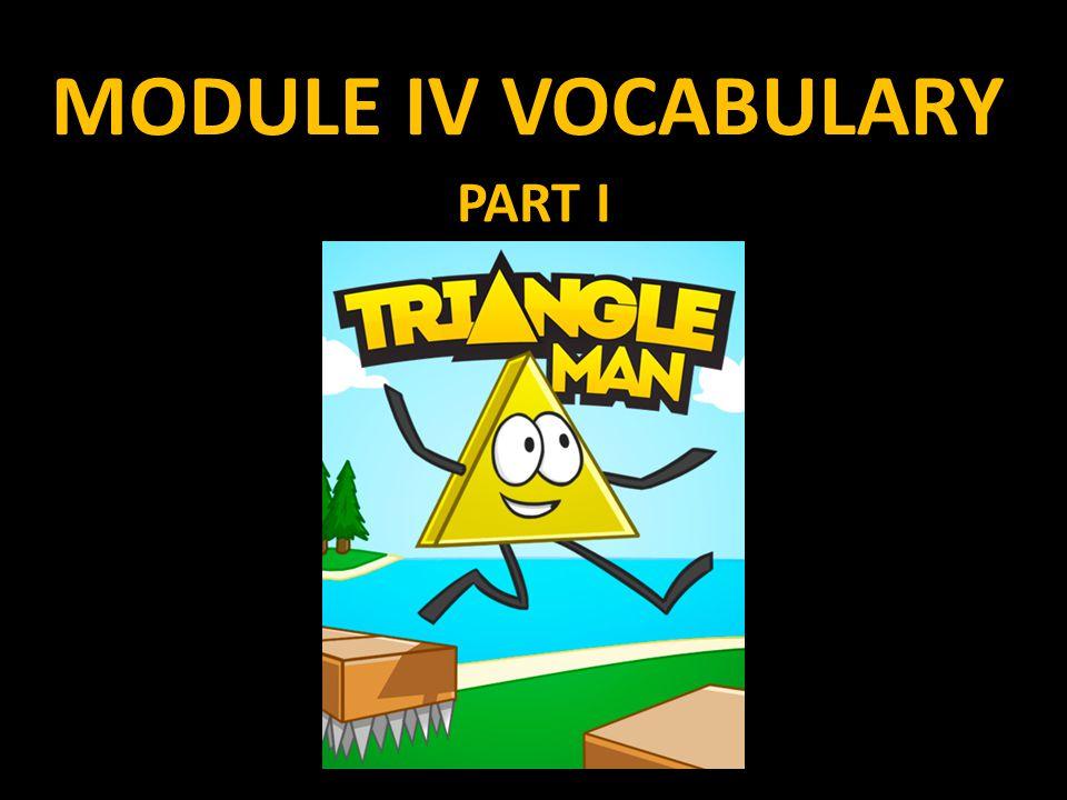 MODULE IV VOCABULARY PART I
