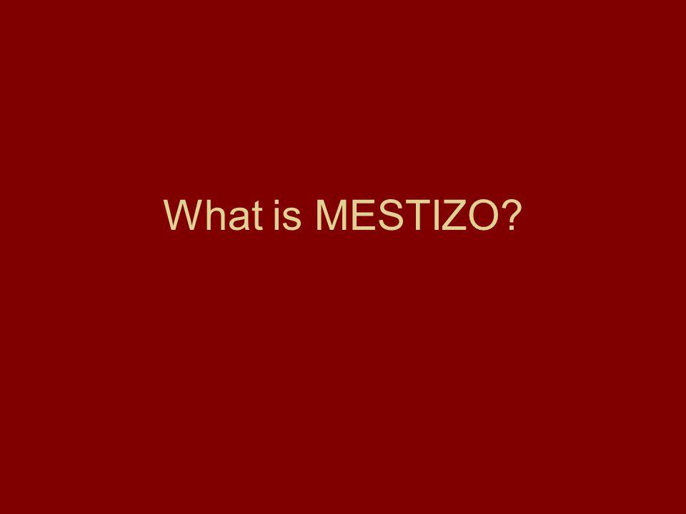 What is MESTIZO